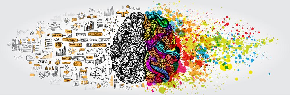 מוח צד ימין קריאייטיבי וצד שמאל אנליטי